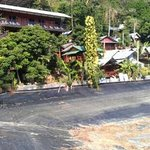 Golden Hill Bungalows resmi