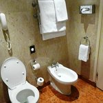  Heated towel bar and bidet