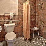  Mobility Accessible Bathroom Shower