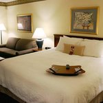 Hampton Inn Williamston Foto