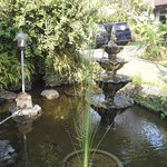 Pond by restaurant