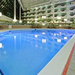 Our pool is great for swiming laps at the Holiday Inn Evansville