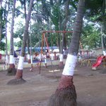 Garden area for kids nestled amidst coconut trees