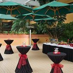 Garden Atrium Reception