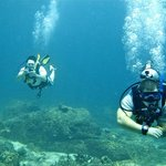 Phuket Scuba Diving & Day Tours