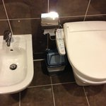 bidet and toilet