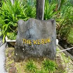 THE KEBUN.......Home!