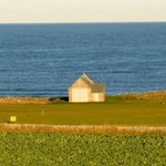 View of Crail Golf Club