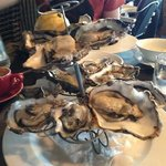  yummy oysters