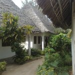 Photo de Jambo Brothers Bungalows