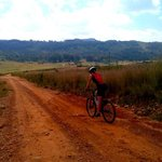 Dirt road perfect for an easy mountain bike ride