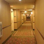 Foto van Holiday Inn Hotel Express & Suites West Hurst