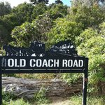 Horopito end of Old Coach Road cycle track