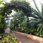 Howard Peter Rawlings Conservatory