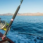 Sport Fishing Lanzarote