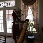Beautiful harp in the living room