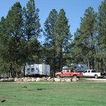  Some of our rv site are in shady areas as well.
