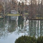Spring Grove Reflections