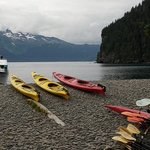  Kayaking on Fox Island from Kenai Fjords Wilderness Lodge