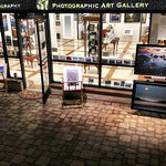 Dan McGeorge Gallery