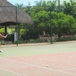  tennis classes in the morning - We recommend the trainer!