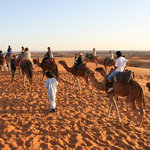camel trekking Morocco