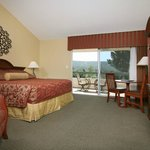  King size lodge room.  All rooms have large balconies with views.