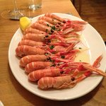  A dozen delicous langoustines