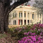 Bocage with azaleas in bloom