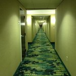 Foto de SpringHill Suites Billings