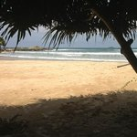 local beach at Vivanta - Bentota