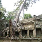 Angkor Pura Tour Guide Team Day Tour