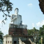  grote witte buddha