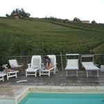 Pool among the wineyards