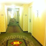 Photo de Hilton Garden Inn Norwalk