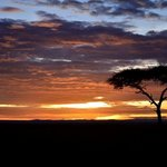 Sun-rise over the Masai Mara