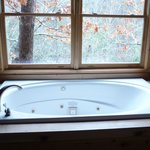 Jacuzzi Tub and view from Master Suite