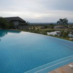 "Infinity pool and ""watering hole for elephants"""