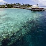 Jetty and house reef at Wakatobi Dive Resort