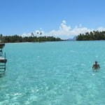  snorkelling from our over water bungalo