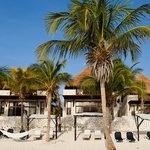Beauty and comfort become ever more present at Las Ranitas nestled in the middle of the Mayan ju
