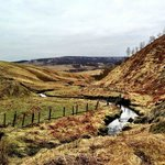 Whitelee Farm Walk - view over stream