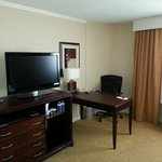 Фотография Hilton Chicago/Oak Lawn