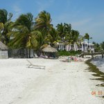  Coco Plum beach and tennic resort