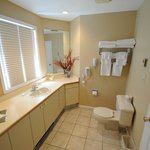 Executive Suite Guest Bathroom