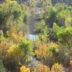 The Verde River in the Fall