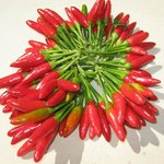  Hot red peppers/ peperoncini