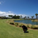 ‪Waikoloa Kings' Course‬