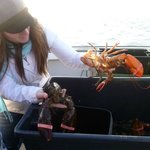  Lobster fishing trip