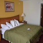 Photo de Quality Inn & Suites Universal Studios